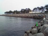 海釣り.jpg